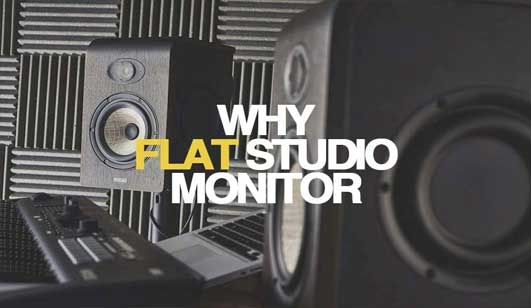 guide flat monitor speaer what is